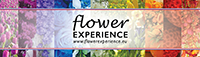 Flower Experience