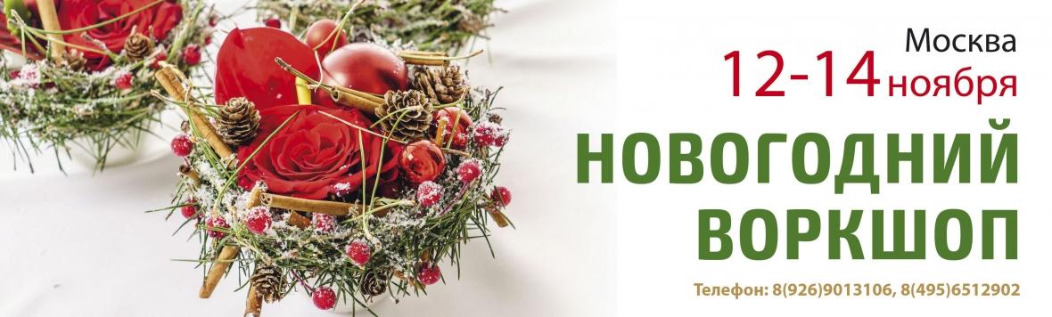 Новогодний воркшоп 12-14 ноября