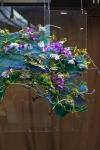 Композиция цветов  - Вода в воздухе