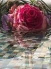 Букет невесты  - Огонь и вода