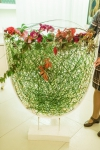 Композиция цветов  - Цветочный лабиринт