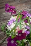 Букет  - Цветы от Аннушки