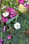 Композиция цветов  - Корона нимфы