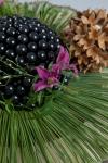 Композиция интерьерная новогодняя  - Колючий жемчуг