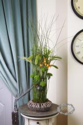 Композиция цветов живая композиция - Ночной мотылек