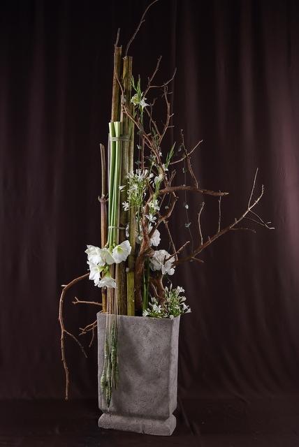 Композиция цветов  - Каменный лес