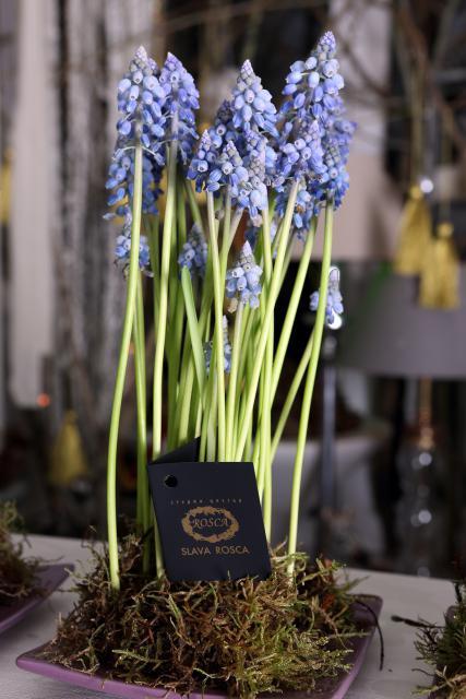 Композиция цветов живая композиция - Весенний Дуэт